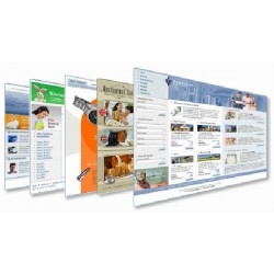 3 Pages dynamic website in...
